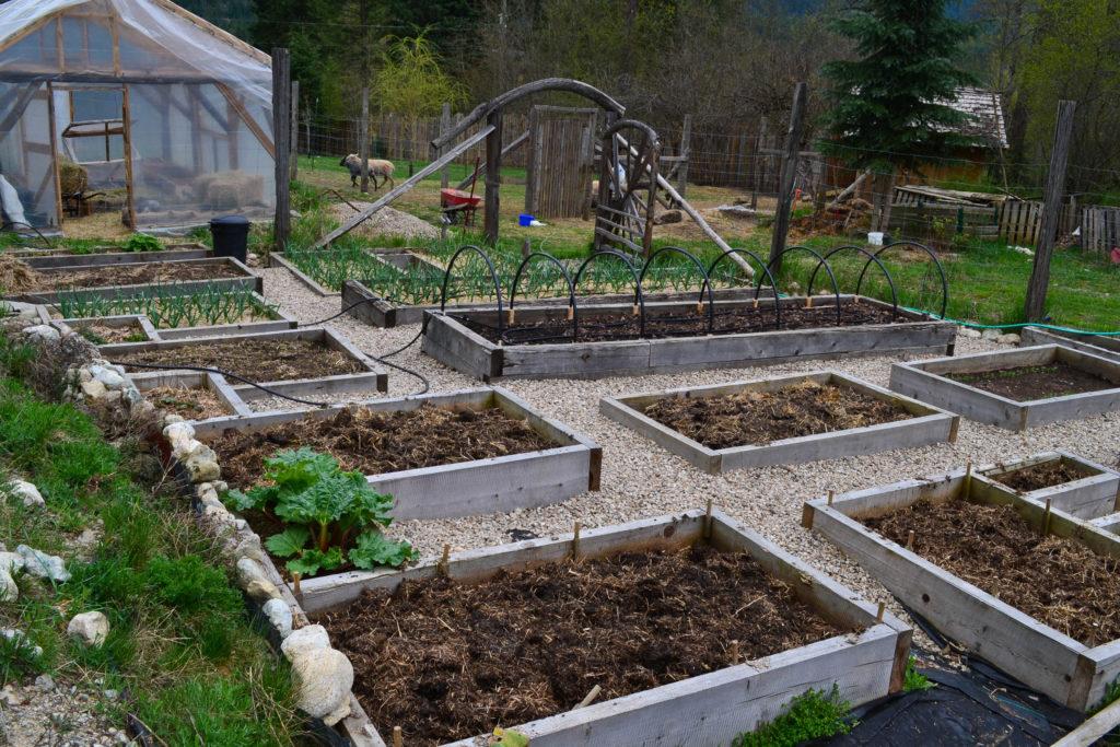 April 14, 2016 - big garden 2...