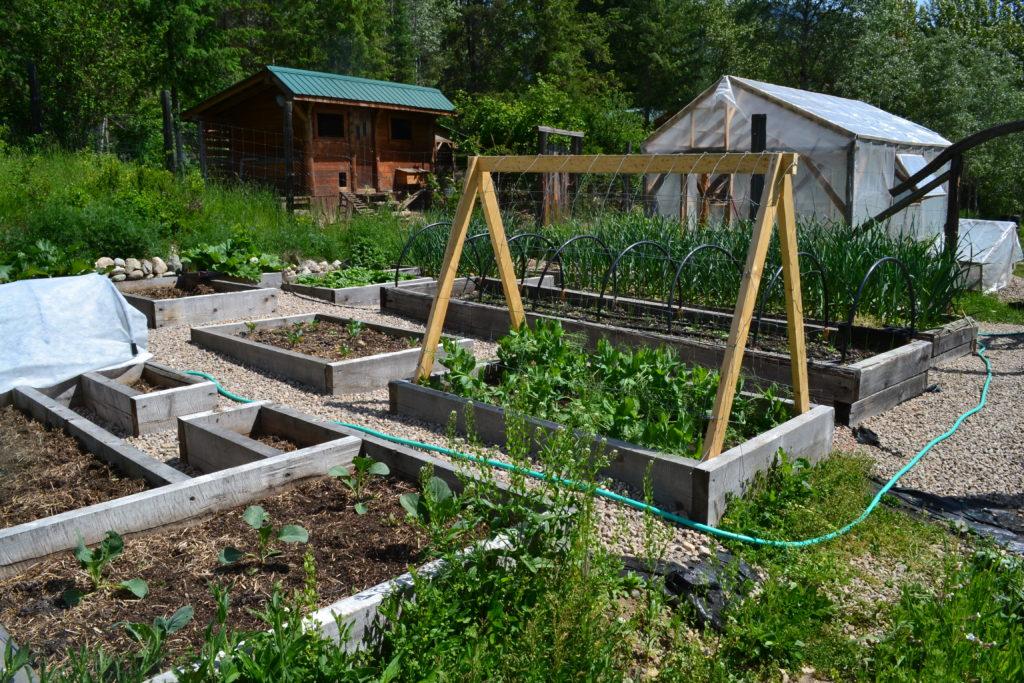 May 17, 2016 - big garden 1