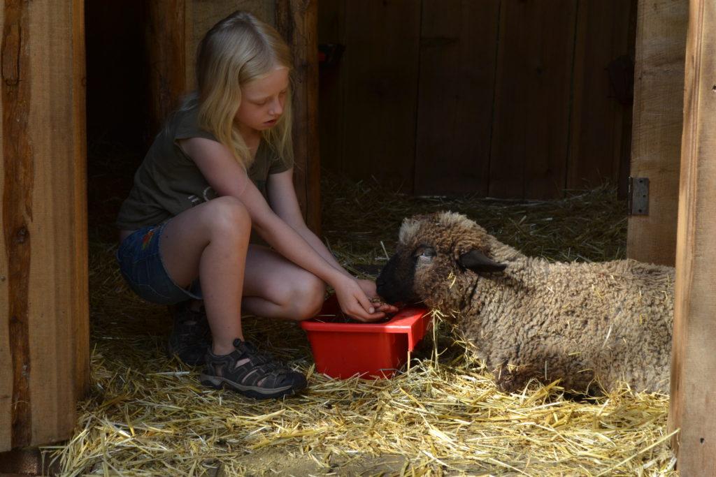august-2016-farm-vet