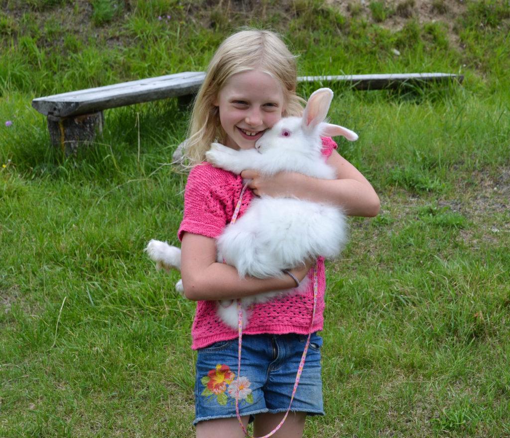 august-2016-angora-bunnies-11