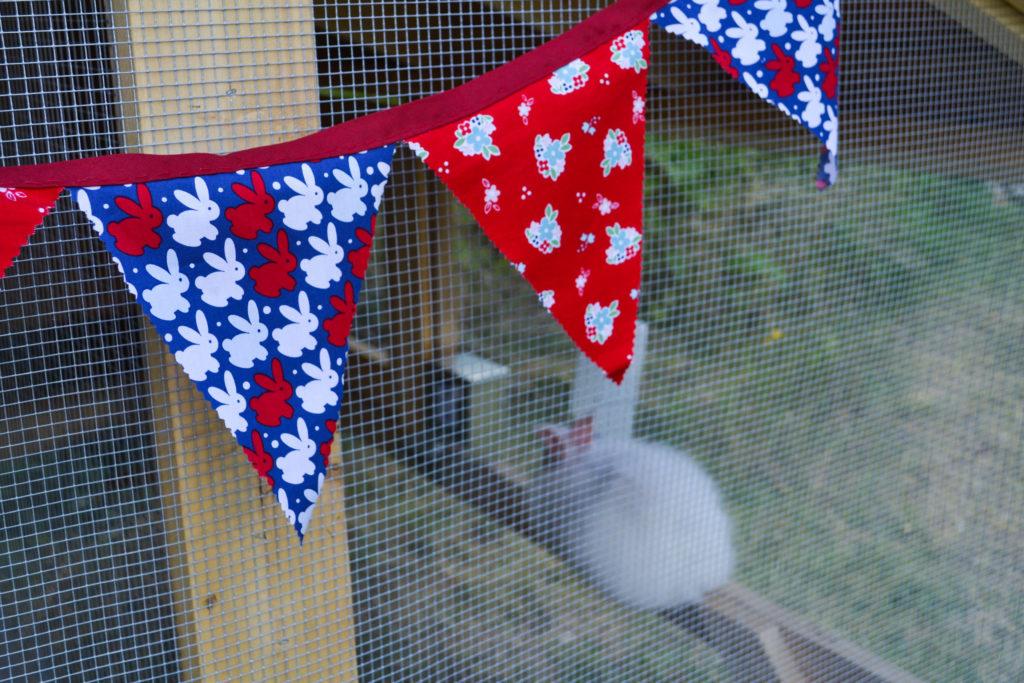 august-2016-angora-bunnies-16