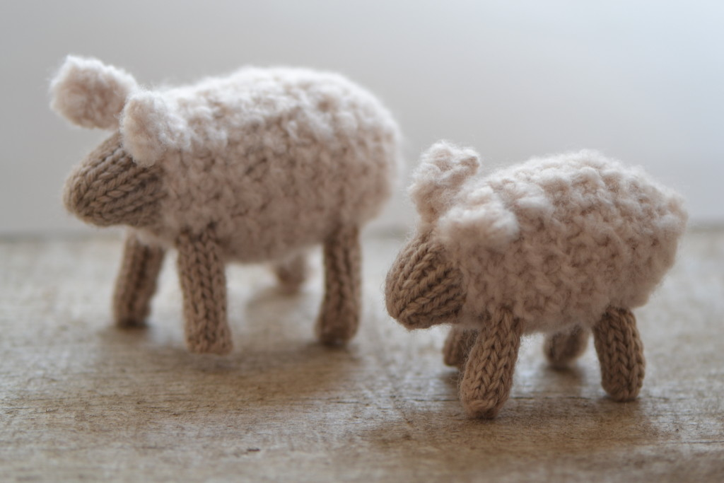 2016 - March - white sheep 1