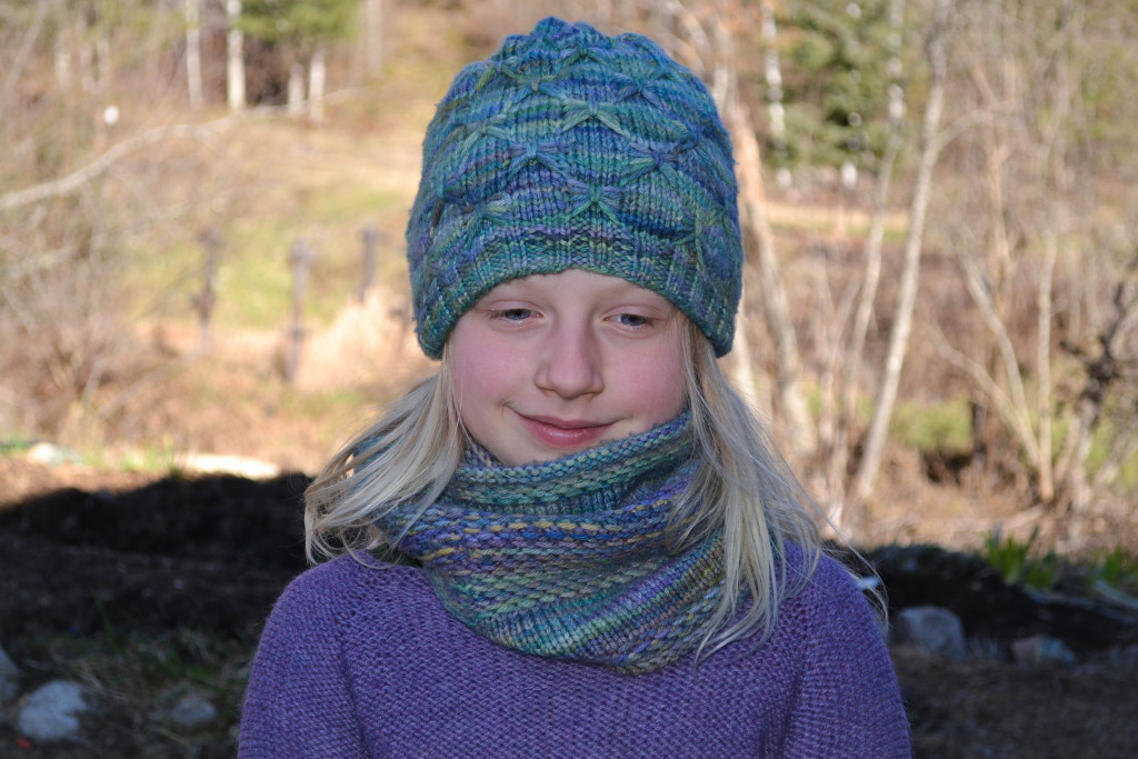 March 2016 - dragonfly hat 1...