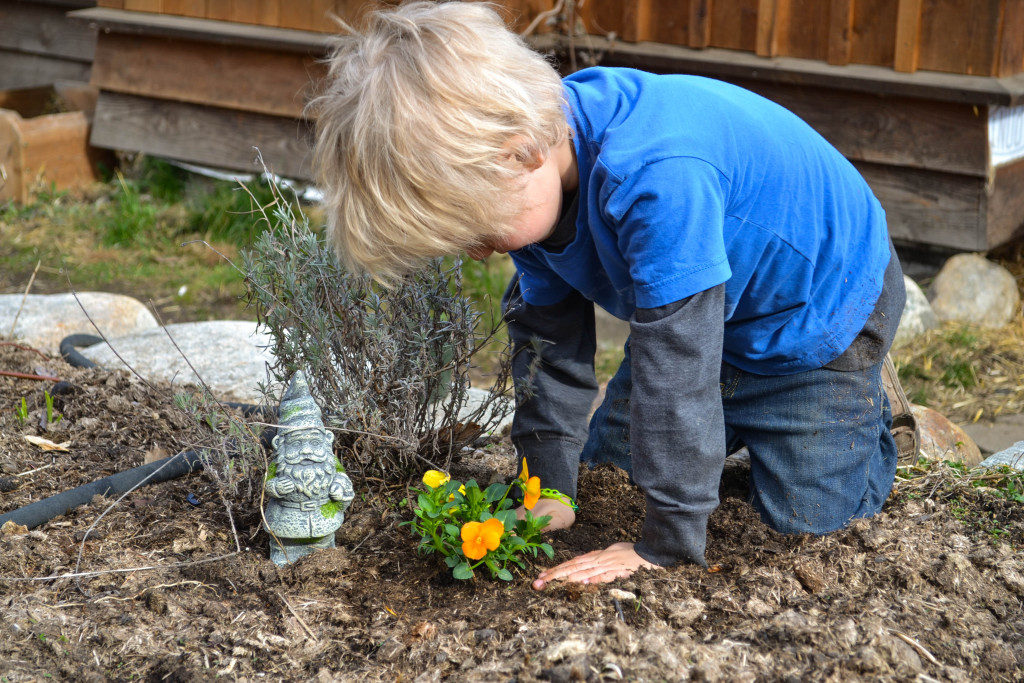 March 2016 - planting Easter flowers 2...