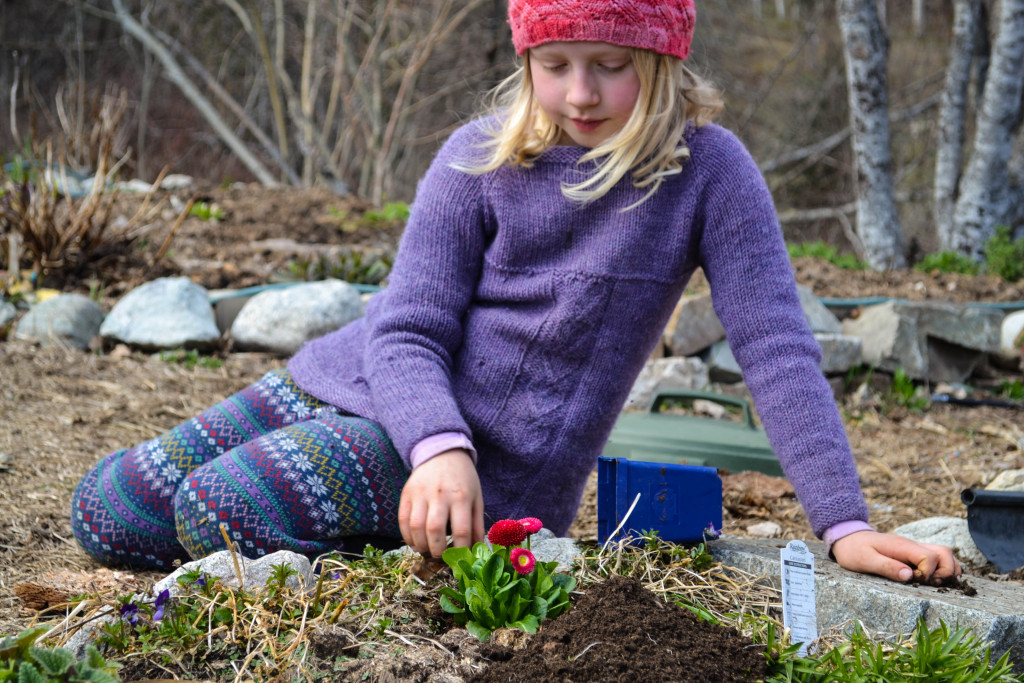 March 2016 - planting Easter flowers 3...