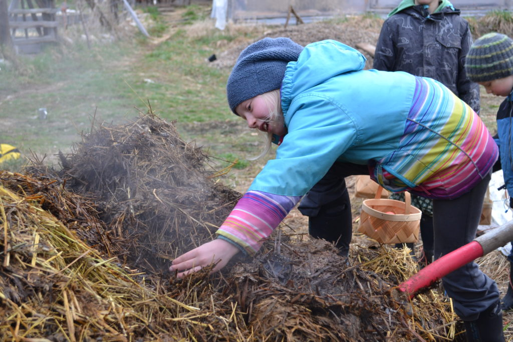 March 2016 - manure composting 2