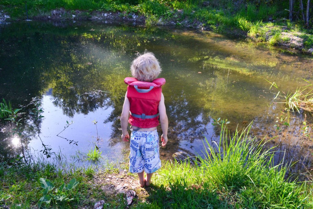 May 1, 2016 - first dip in the pond 3...
