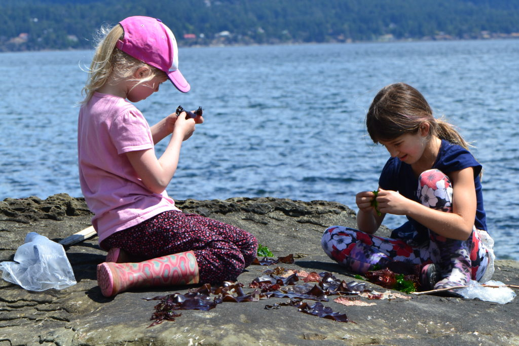 May 2016 - Salt Spring visit 3 - Seaweed Cafe